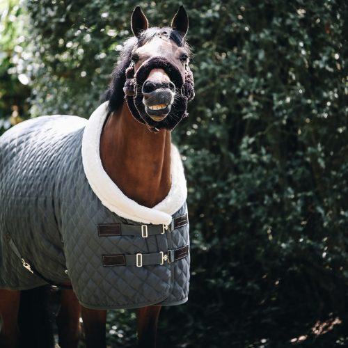 Wann sollte ich mein Pferd eindecken?