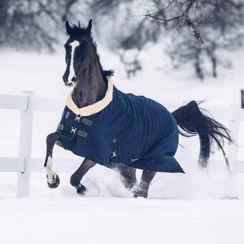 Winterpause: Wie trainiere ich mein Pferd im Winter?