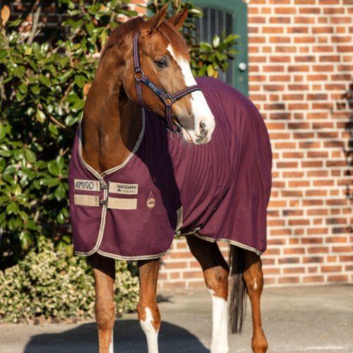 Was Du beim Eindecken des Pferdes beachten solltest!